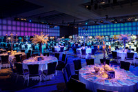 Dell Children's Hospital Gala 2012